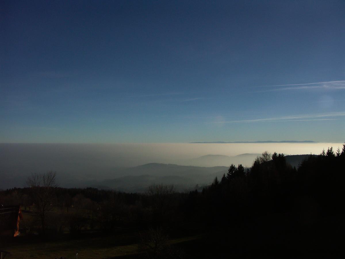 Aus der Nebelsuppe zum Schˆckelbartl